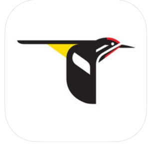 Merlin Bird ID app