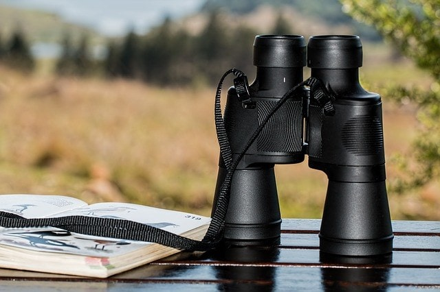 Binoculars ready for hunting