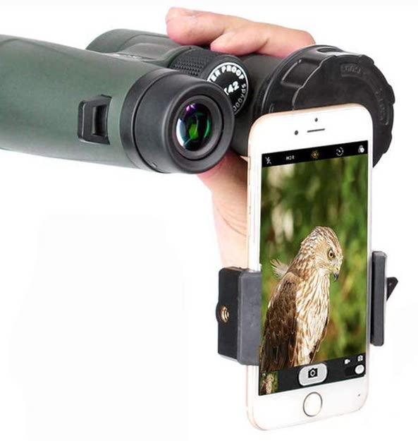 Binocular digiscope mount