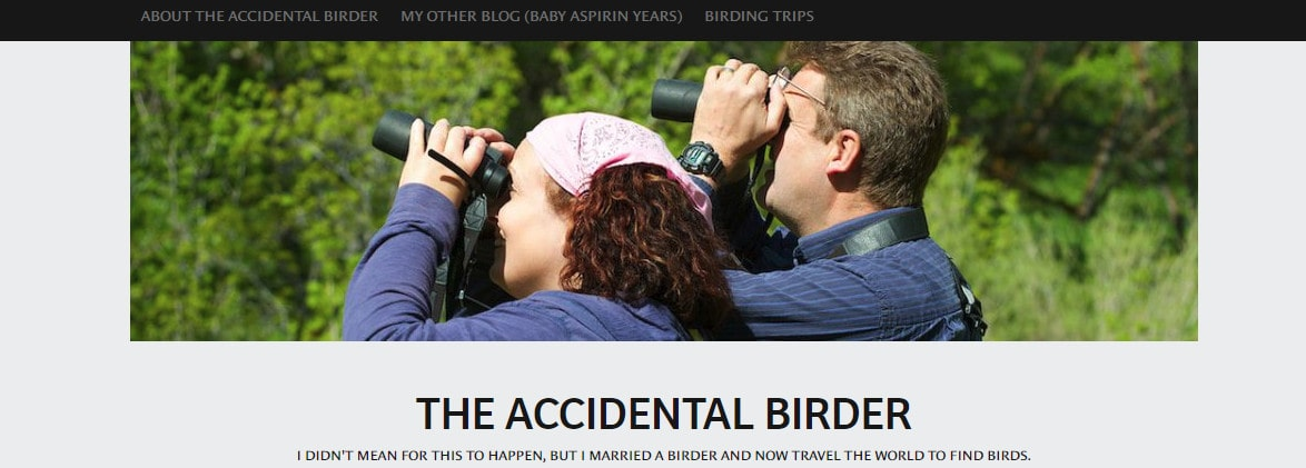 The Accidental Birder
