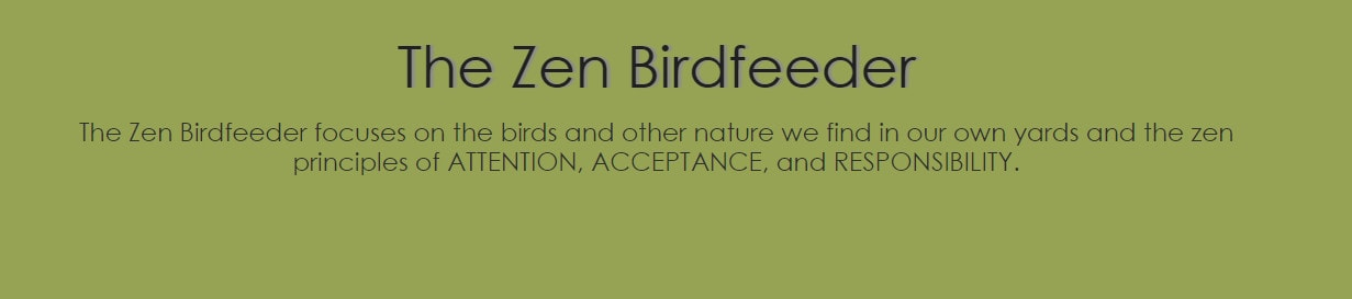 The Zen Birdfeeder