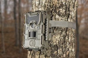 a trail camera on tree