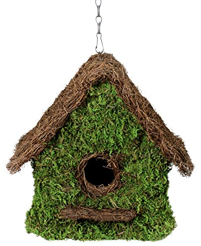 SuperMoss (56012) Maison Birdhouse with Chain, 11 by 12-Inch, Fresh Green