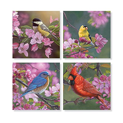"Set of 4 ""Mixed Birds on Pink Flowers"" Square Stone Coaster Set by Carson Home Accents"