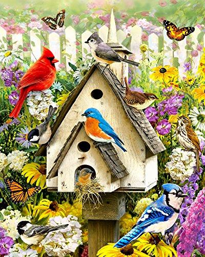 Vermont Christmas Company Backyard Birds Jigsaw Puzzle 1000 Piece