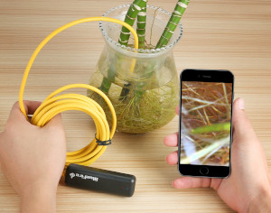 an iPhone endoscope