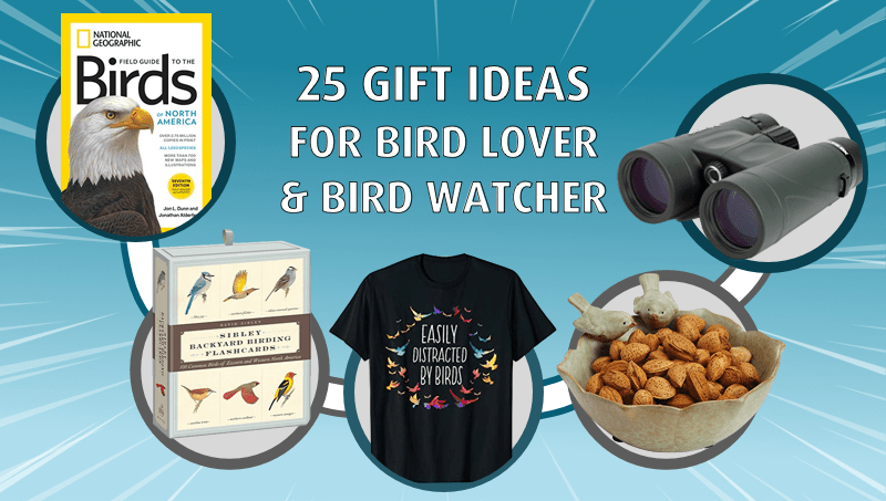 25 Best Gift Ideas for the Bird Lover & Bird Watcher in Your Life