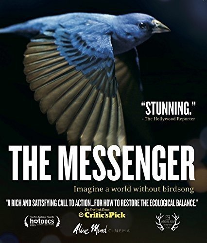 The Messenger on Blu-Ray