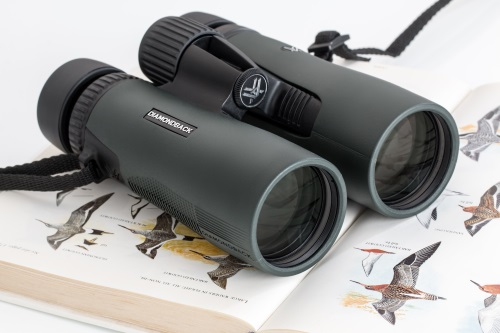 a compact pair of binoculars