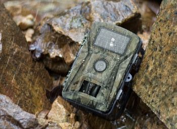 a No Glow Trail Camera