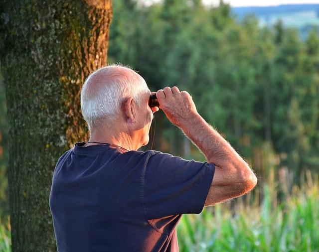 Image-Stabilized Binoculars