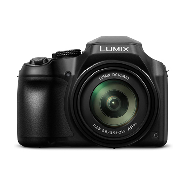 PANASONIC LUMIX FZ80 Digital Camera