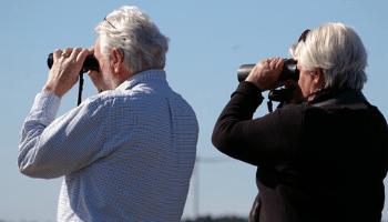 couple holding a binocular