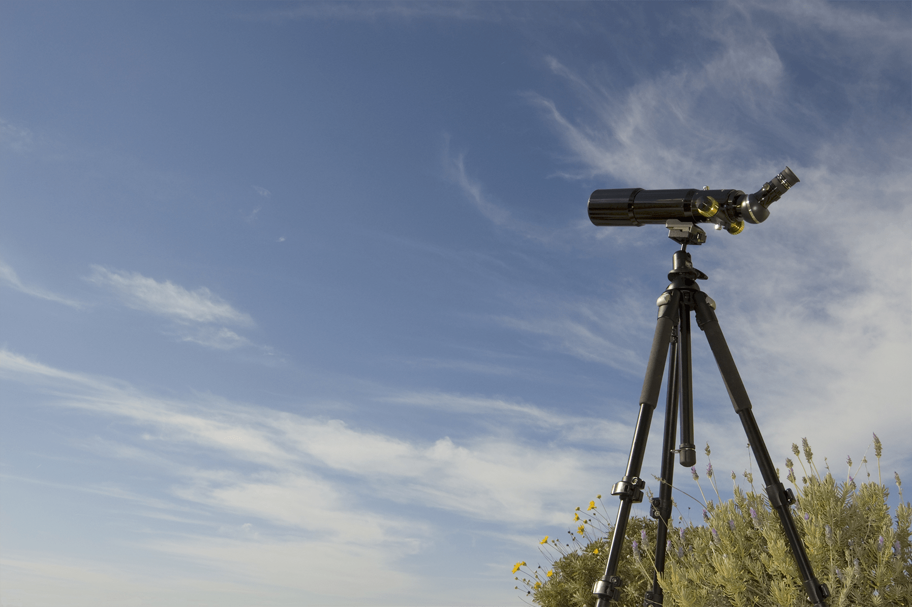 spotting scope image in day light