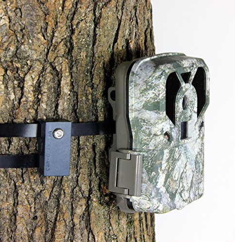 lockbox for trail camera