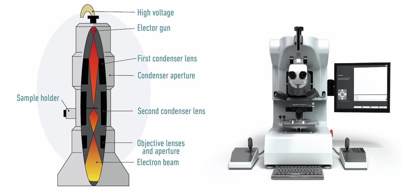 Electron microscope diagram