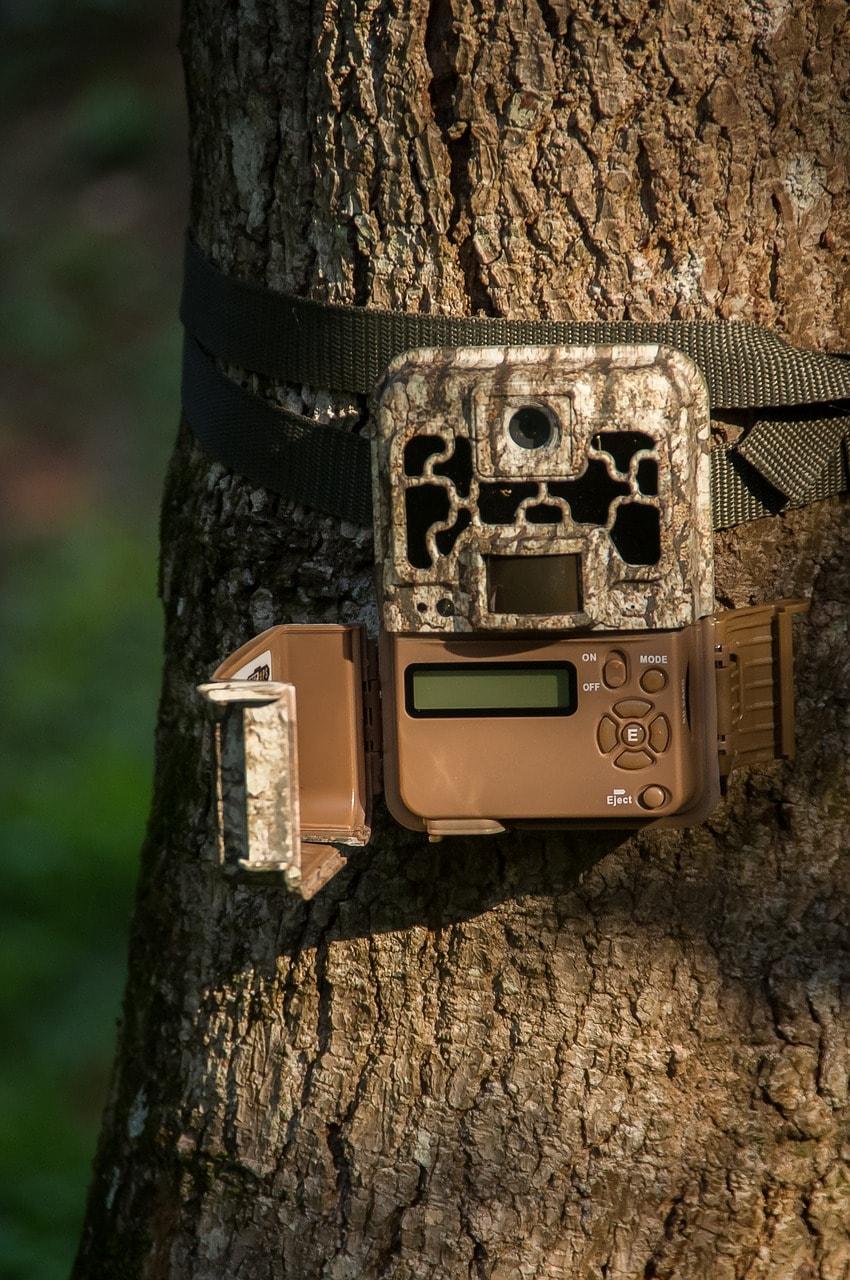 a trail camera