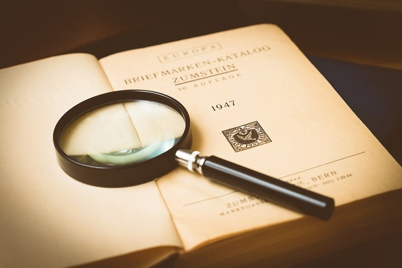 magnifying glass-book-pixabay