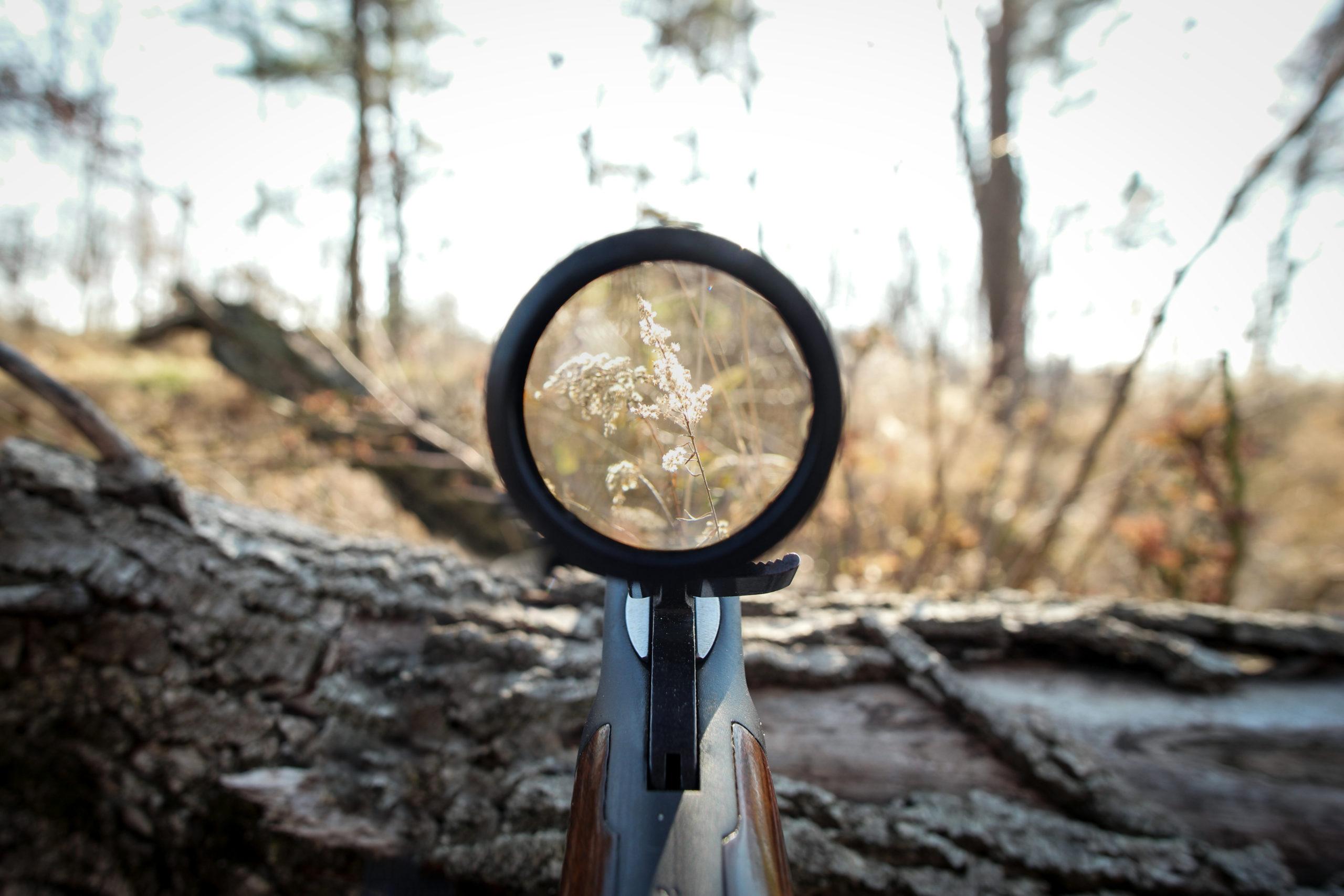 riflescope_Jaime Weaver_Shutterstock