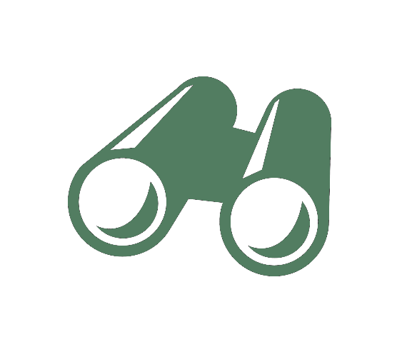 binoculars divider