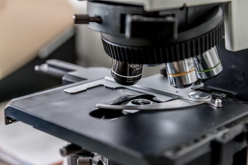 microscope close up