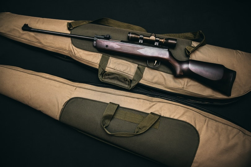 Rifle set
