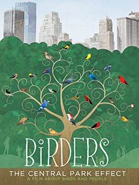 Birders - The Central Park Effect