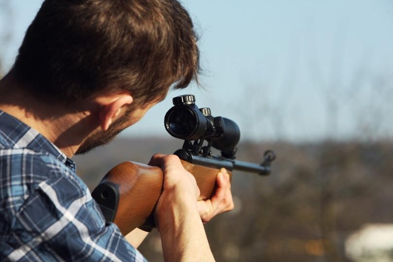 rifle scope_andreas160578_Pixabay
