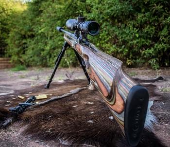 rifle with scope_D_Van_Rensburg_Pixabay