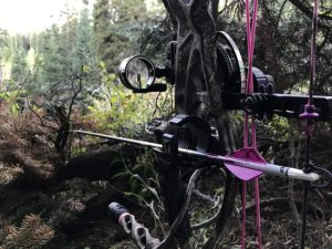actual use of TRUGLO Range Rover Single-Pin Bow Sight