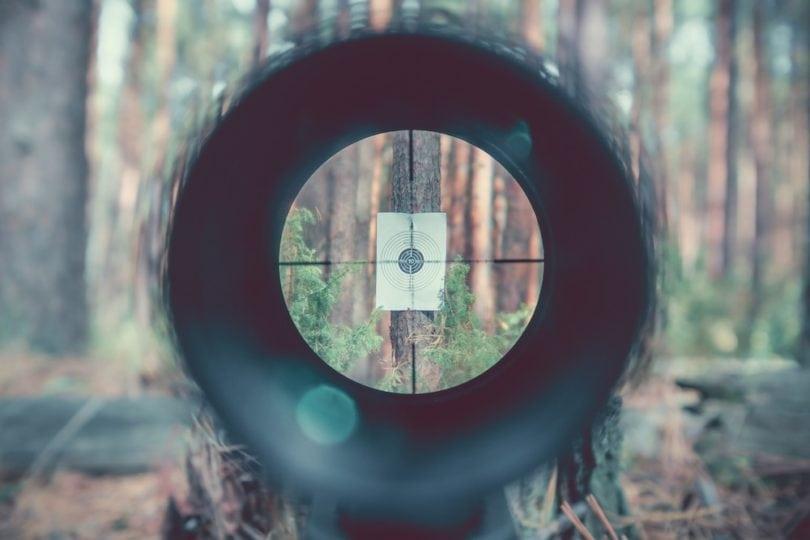 Sniper gun scope view, target