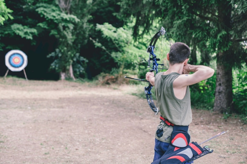 bow target_AND21_Shutterstock