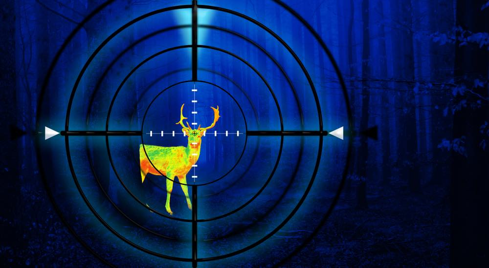Hunting a deer in a forest at night using thermal imaging scope