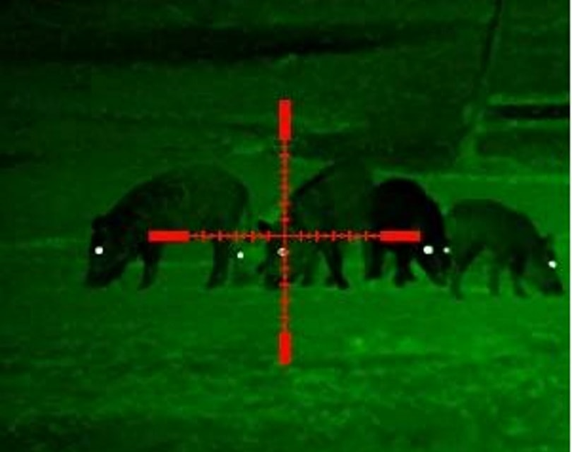 night visiov scope_sightmark_Amazon