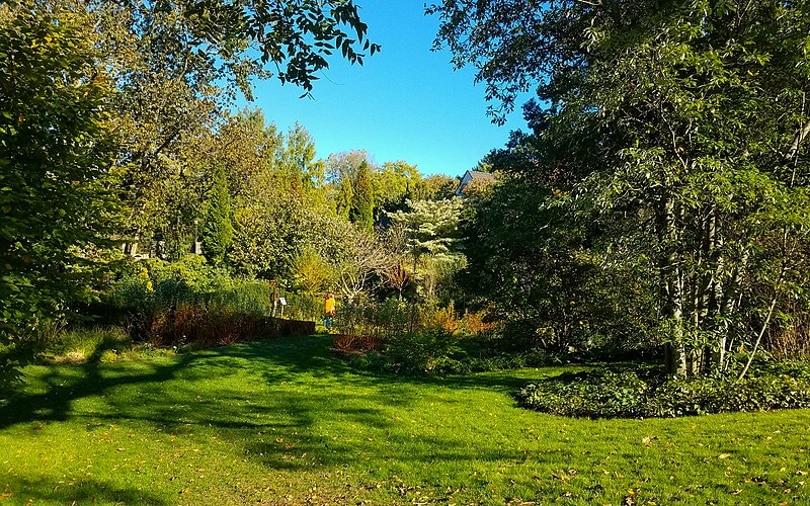 peaceful yard_Ballinacurra Weston_Wikimedia