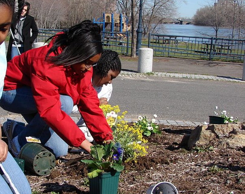 planting flowers_Mielon_Wikimedia