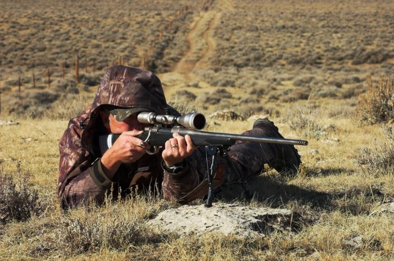 Rifle-bipod_Justin-Kral_Shutterstock