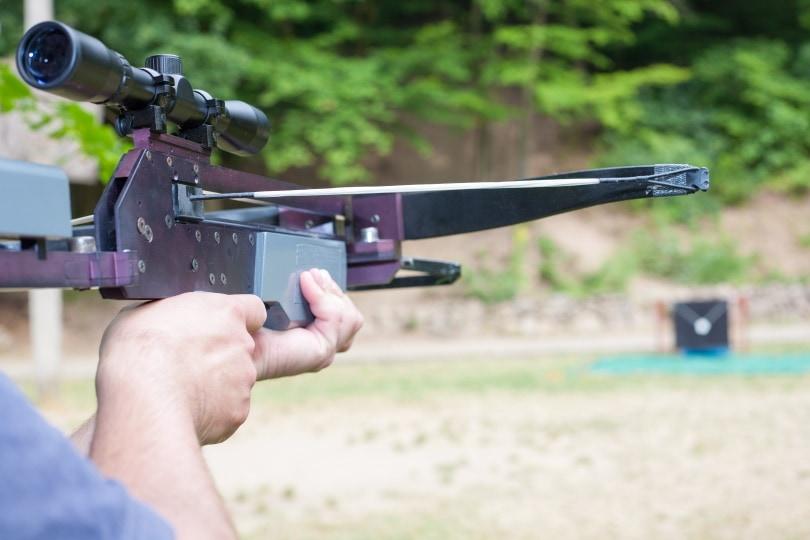 crossbow scope_andras_csontos_Shutterstock
