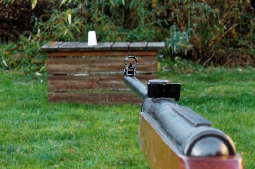 rifle iron sight_Bruno_Pixabay