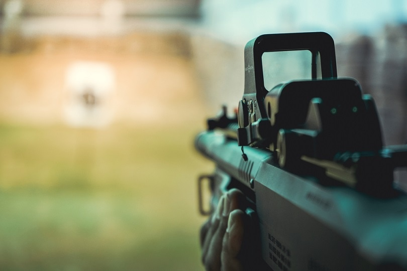 tactical-shotgun-with-red-dot-sight_Santipong-Srikhamta_shutterstock